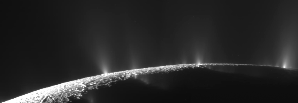 The origin, history and role of water in the evolution of the inner Solar System